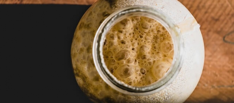 Which yeasts are best for distilling?